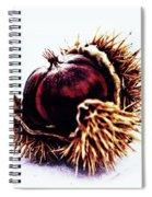 Prickly Little Bitch Spiral Notebook