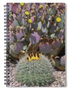 Prickly Pear Blooms Spiral Notebook