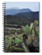 Prickly Pear Cacti Rancho Sierra Vista Satwiwa Mountains Spiral Notebook