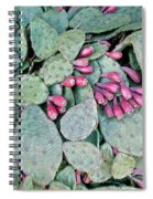 Prickly Pear Cactus Fruits Spiral Notebook