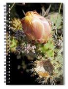 Prickly Pear Flower 4 Spiral Notebook