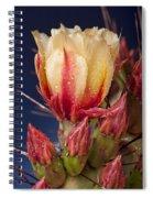 Prickly Pear Flower Wet Spiral Notebook