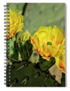 Prickly Pear Flowers H42 Spiral Notebook