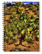 Prickly Pear In Bloom With Brittlebush And Cholla For Company Spiral Notebook