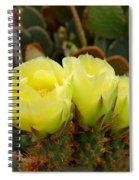 Prickly Pear Trio Spiral Notebook