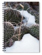 Prickly Pears Spiral Notebook