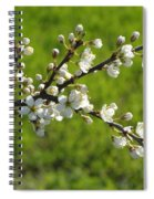Pride Of The Hedgerow Spiral Notebook