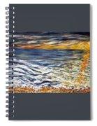 Priliv Meni Vse Spiral Notebook