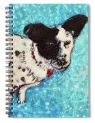 Primrose Water Love Spiral Notebook