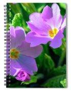 Primroses Spiral Notebook