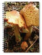 Prince Agaricus Mushroom Spiral Notebook