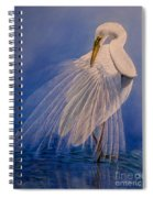 Princess Of The Mist Spiral Notebook