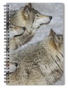 Priority Spiral Notebook
