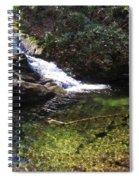 Pristine Stream Pool Spiral Notebook