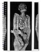 Processes Of Mummification Spiral Notebook