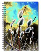 Proclamation Of Spring Spiral Notebook