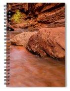 Professor Creek Canyon 2 Spiral Notebook