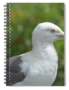 Profile Of Adult Seagull Spiral Notebook