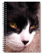 Profile Of Paws Spiral Notebook