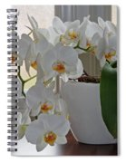 Profusion Of White Orchid Flowers Spiral Notebook