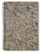 Proliferate Spiral Notebook