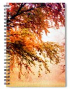 Promise Of A Brighter Future Spiral Notebook