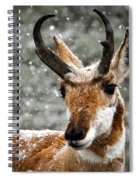 Pronghorn Buck In Snow - Yellowstone National Park Spiral Notebook