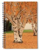 Prosser - Autumn Birch Trees Spiral Notebook