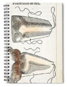 Prosthetic Noses, Ambroise Pare, 1561 Spiral Notebook