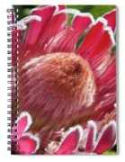 Protea Bloom Spiral Notebook