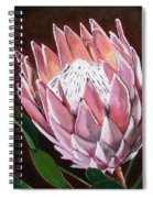Protea Spiral Notebook