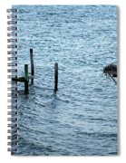 Protected Osprey Nest Spiral Notebook