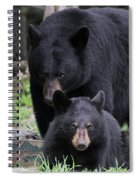 Protecting The Cub Spiral Notebook
