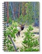Protective Elk Spiral Notebook
