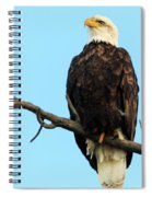 Proud Eagle Spiral Notebook