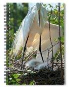Providing A Little Shade Spiral Notebook