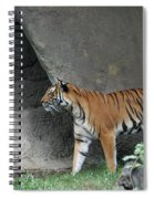 Prowling Tiger Spiral Notebook