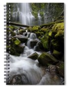 Proxy Falls Oregon 5 Spiral Notebook
