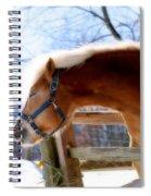 Pssssssh.....it's Not Cold Spiral Notebook