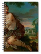 Psyche Gathering The Fleece Of The Rams Of The Sun Spiral Notebook