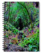 Psychedelic Fern Gully On Mt Tamalpais Spiral Notebook