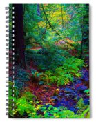 Psychedelicosmic Creek On Mt Tamalpais Spiral Notebook
