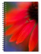 Psychedlia Spiral Notebook