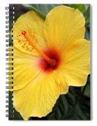 Pua Aloalo Spiral Notebook