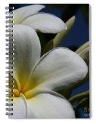 Pua Lena Pua Lei Aloha Tropical Plumeria Maui Hawaii Spiral Notebook