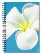 Pua Melia Pakahikahi Spiral Notebook
