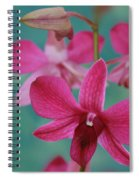 Puanani Kealoha Dendrobium D Burana Red Flame Hawaiian Orchid Spiral Notebook