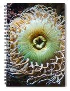 Pucker Up Spiral Notebook