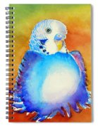 Pudgy Budgie Spiral Notebook