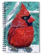 Pudgy Cardinal Spiral Notebook
